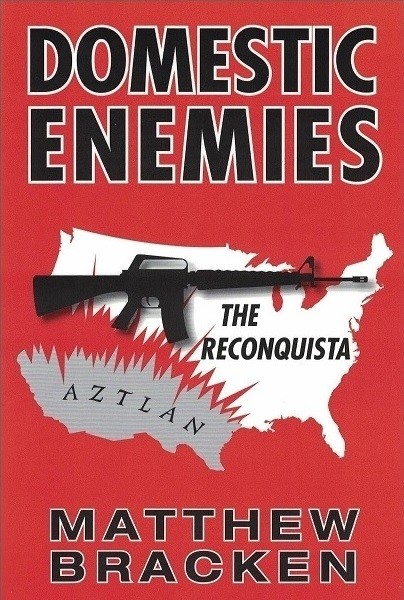 Domestic Enemies book cover.